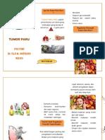 Leaflet Tumor Paru