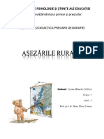 Asezarile-rurale (2).docx