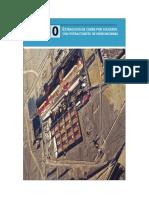 SECCION 10 Extraccion del Cobre por Solventes.pdf