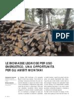 Le biomasse legnose per uso energetico, opportunità per le aree montane