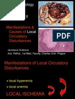11circlocdisturb-texts.pptx