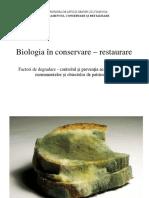 biodeteriorare.pptx