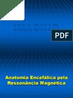 Anatomia - Encefalica Pela Ressonancia Nuclear Magnetica