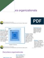 6_Structura organizationala