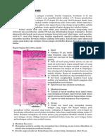 materi ujian 2 (1).docx