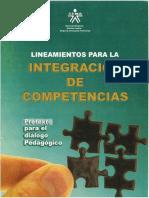Lineamientos Para La Intergracion de Competencias