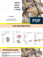 Dissection Supracolic & Infracolic