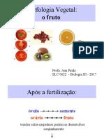 Aula 9 Fruto