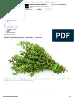 Tomillo- Contraindicaciones, Propiedades y Beneficios - Unisima Artículo