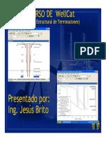 CURSO WELLCAT_BASICO