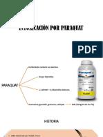 Toxico por paraquat