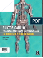 Puntos Gatillo y Cadenas Musculares Funcionales