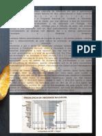 obesidade site (Página 02)