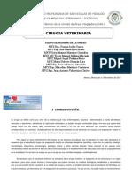 119631118-cirugia-veterinaria.pdf