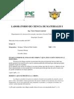 Consulta Preparatoria 2 (1) ccmm
