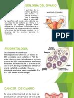 ANATOMÍA Y FISIOLOGÍA DEL OVARIO.pptx