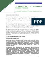 lesion nerviosa periferica.pdf