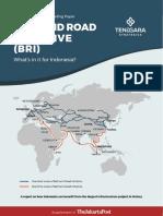 BRI-Briefing-Paper-English.pdf