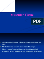 Histology, Lecture 5, Muscular Tissue (slides)