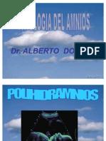 O. P. HIDRAMNIOS