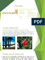 Flora y Fauna de La Zona Sur Abigail Astorga Rojas