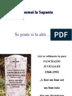 _Cimitirul Vesel