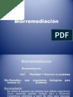 Bioremediacion Suelo