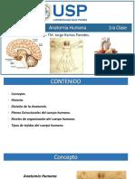 1º Anatomia