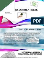 MaldonadoManrique RosaIsela M15S3 Políticasambientales