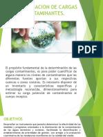 DETERMINACION DE CARGAS CONTAMINANTES.pptx