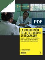 amr430012009spa (2).pdf