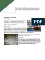 11. Convenio Sobre Pueblos Indigenas y Tribales en Paises Independientes OIT 169