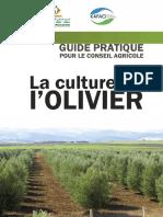 La Culture de l'Olivier