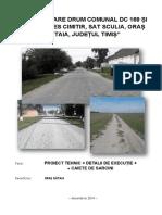 316790731-Proiect-Tehnic-DRUMURI.pdf