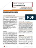 Wen CZ 2014 WJG 20 7312 Patogenesis of Liver Cirrhocis