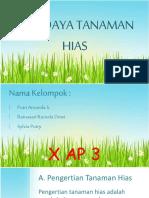 Budidayatanamanhias 150426075841 Conversion Gate02