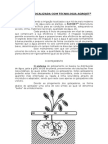 Manual Irrigacao
