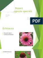 264273499 Proiect Farmacognozie Specială(1)