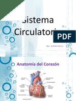 Sistema_Circulatorio.pptx