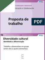 Ptic78 Div Cultural1