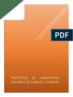 Protocolo P 1