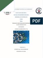 Tarea Primer Parcial Tecnicas de Caracterizacion 7174