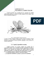 Materie examen entomologie