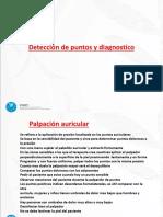 Palpacion Auricular