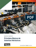 White Paper - Training - Hidráulica