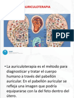 Teoría de Microsistemas en La Terapia Auricular