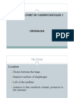 ANATOMY OF CARDIOVASCULAR 1.pdf