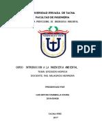 ESTUPIDO.docx Final