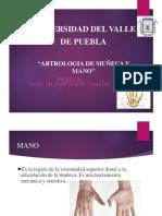 Artrologia Muñeca y Mano