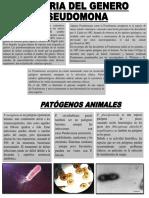 Historia Del Genero Pseudomona